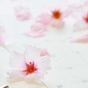 >Monthly花セラピーコース